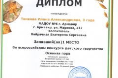 диплом теняева