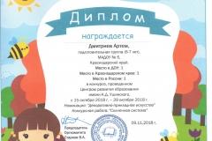 диплом солнечная система